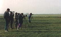 Ornithologie de terrain